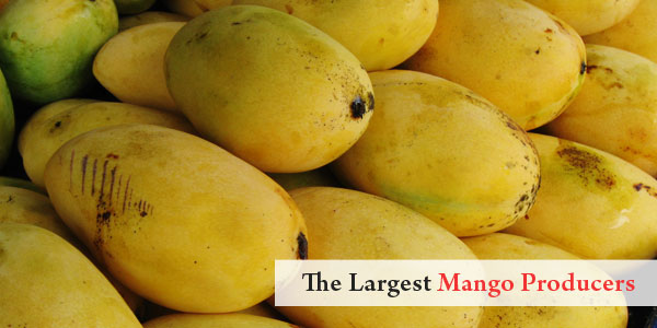 Asian Facts - The Largest Mango Producers