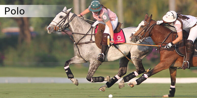 Sports in Asia - Polo