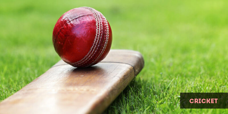 Popular Sports in Europe - Cricket