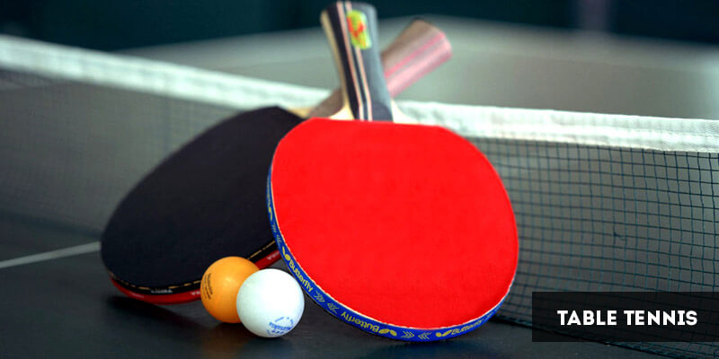 Popular Sports in Europe - Table Tennis